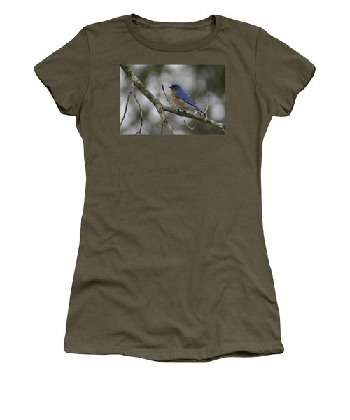 Eastern Bluebird Women's T-Shirt