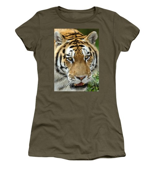 Women's T-Shirt (Junior Cut) featuring the photograph Eyes Of The Tiger by John Haldane