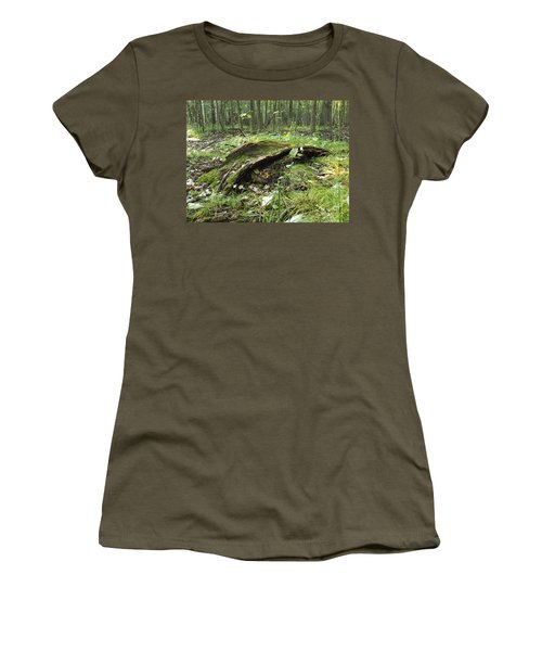 Fairy Bridge  Women's T-Shirt (Athletic Fit)