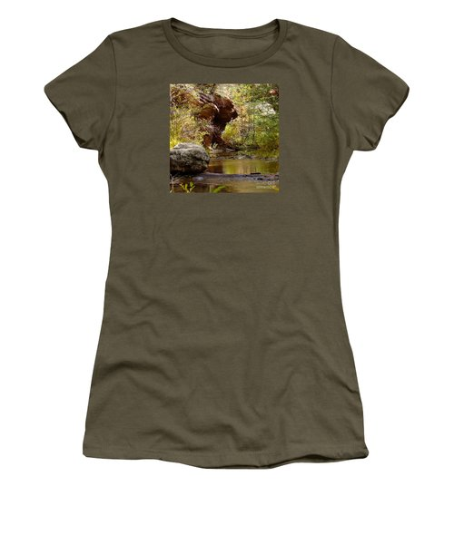 Fall Colors 6472-02 Women's T-Shirt (Athletic Fit)