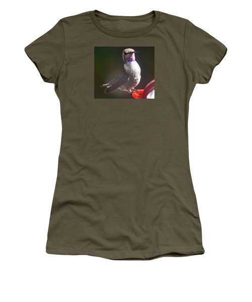 Women's T-Shirt (Junior Cut) featuring the photograph Female Anna On Perch by Jay Milo