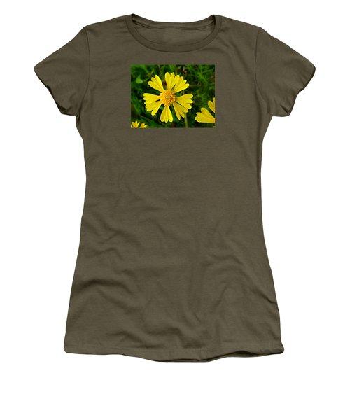 Wild Fine Leaved Sneezeweed Women's T-Shirt (Junior Cut) by William Tanneberger
