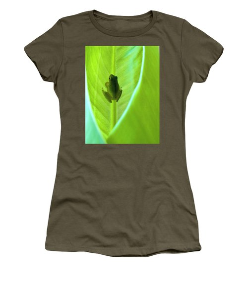Women's T-Shirt (Junior Cut) featuring the photograph Frog In Blankie by Faith Williams