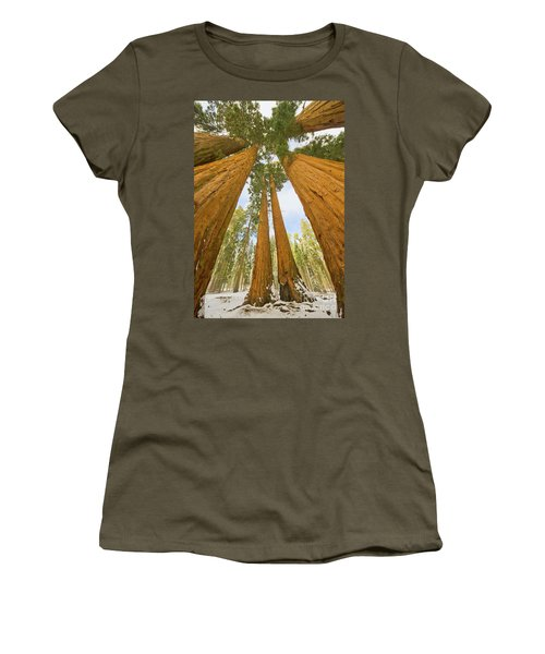Giant Sequoias And First Snow Women's T-Shirt