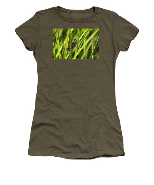 Grasshopper In Grass Women's T-Shirt