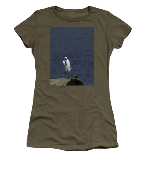 Great Egret Women's T-Shirt