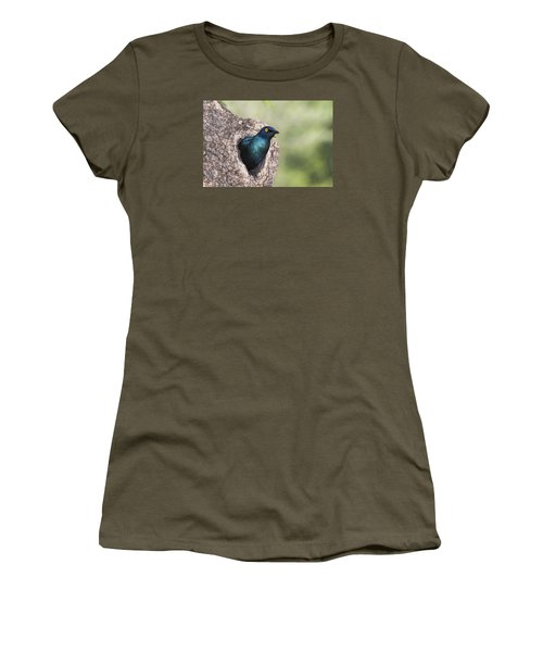 Greater Blue-eared Glossy-starling Women's T-Shirt (Junior Cut) by Andrew Schoeman