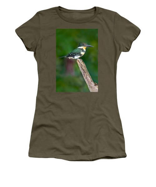 Green Kingfisher Chloroceryle Women's T-Shirt (Junior Cut) by Panoramic Images