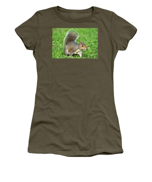Women's T-Shirt (Junior Cut) featuring the photograph Grey Squirrel by Antonio Scarpi