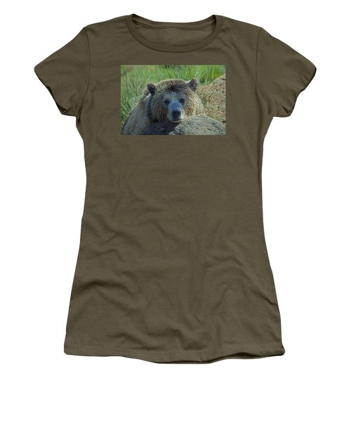 Grizzly Bear Resting Women's T-Shirt