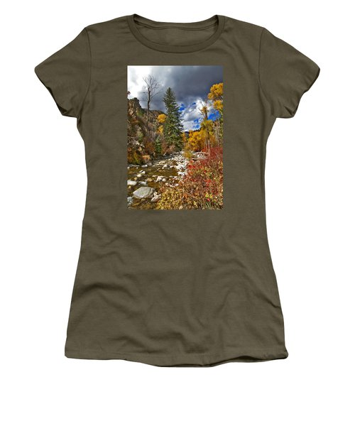 Women's T-Shirt (Junior Cut) featuring the photograph Grizzly Creek Vertical by Jeremy Rhoades