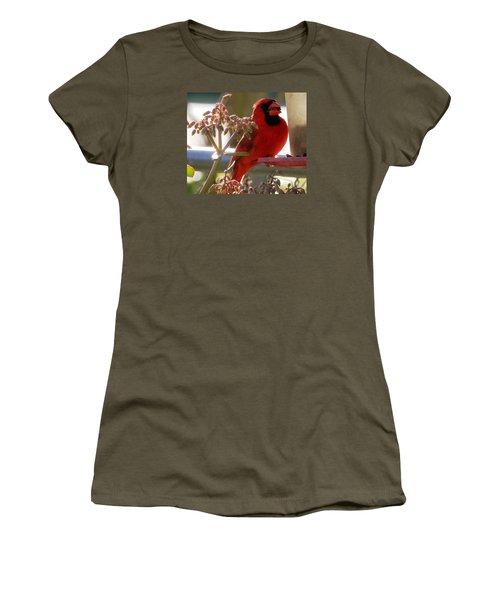 Handsome Red Male Cardinal Visiting Women's T-Shirt (Junior Cut) by Belinda Lee