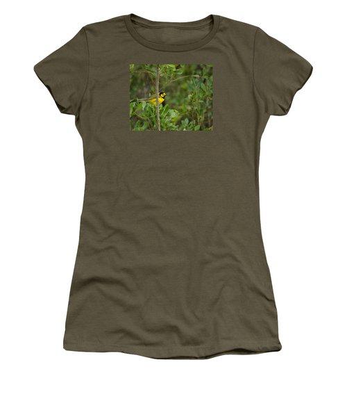 Hooded Warbler Women's T-Shirt