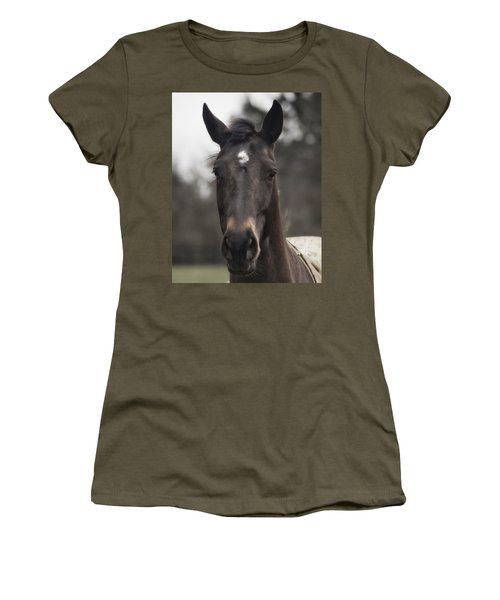 Women's T-Shirt featuring the photograph Horse With Gentle Eyes by Belinda Greb
