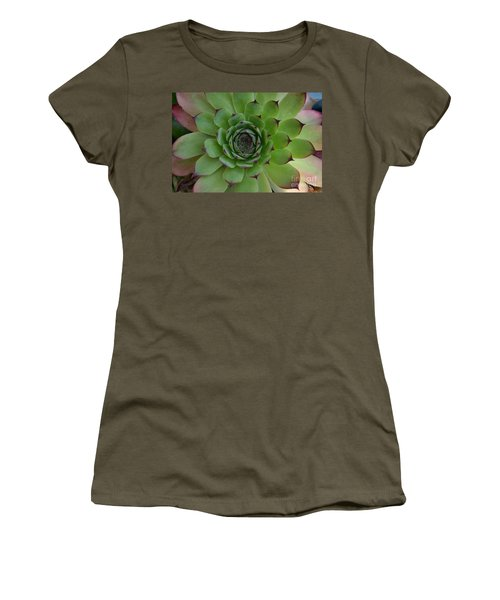 Houseleek Sempervivum Women's T-Shirt