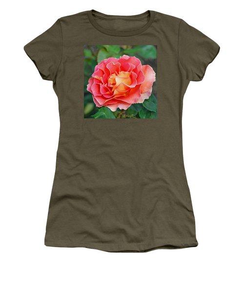 Hybrid Tea Rose  Women's T-Shirt (Junior Cut) by Lisa Phillips