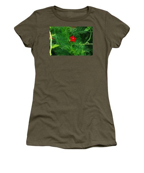 Ipomoea Quamoclit Women's T-Shirt