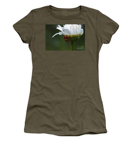 Ladybugs On Shasta Daisy Women's T-Shirt