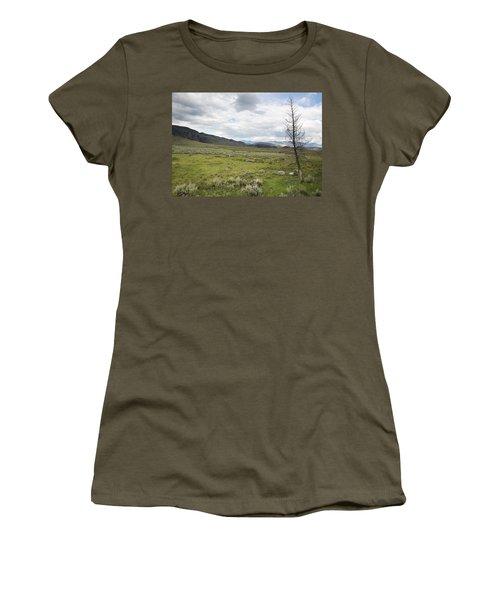 Lamar Valley No. 1 Women's T-Shirt (Junior Cut) by Belinda Greb