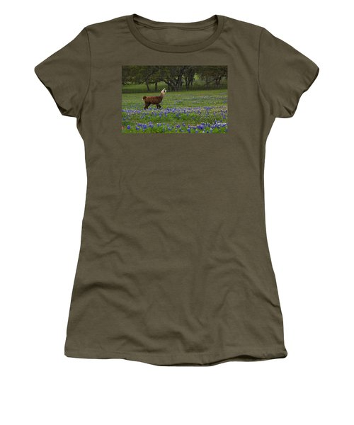 Llama In Bluebonnets Women's T-Shirt (Junior Cut) by Susan Rovira