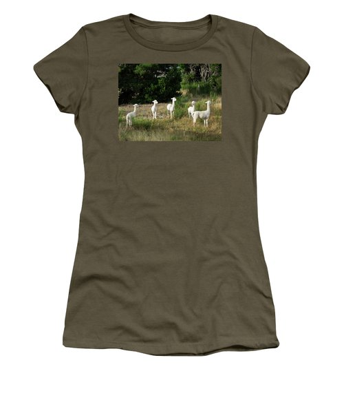 Llamas Standing In A Forest Women's T-Shirt (Junior Cut) by Panoramic Images