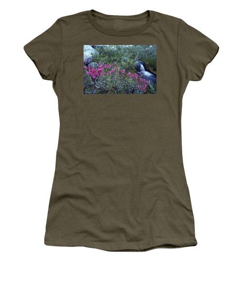 Lupine, Glacier Bay, Ak Usa Women's T-Shirt