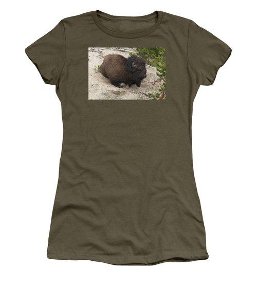 Male Buffalo At Hot Springs Women's T-Shirt (Junior Cut) by Belinda Greb