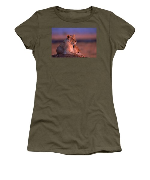 Maneless Lions In Kenya Women's T-Shirt