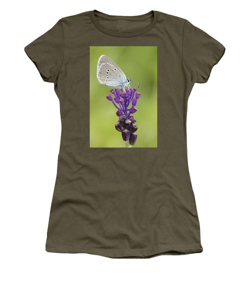 Mazarine Blue Butterfly Dordogne France Women's T-Shirt
