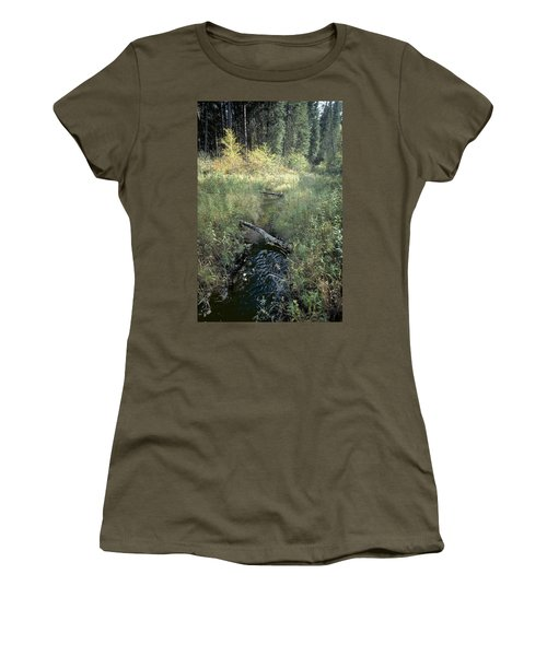 Mississippi River Headwaters Women's T-Shirt (Junior Cut) by Garry McMichael