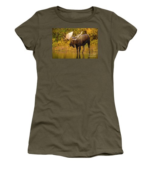 Moose In Glacial Kettle Pond  Women's T-Shirt