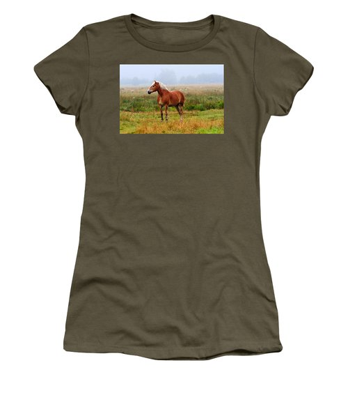 New Brunswick Horse Women's T-Shirt