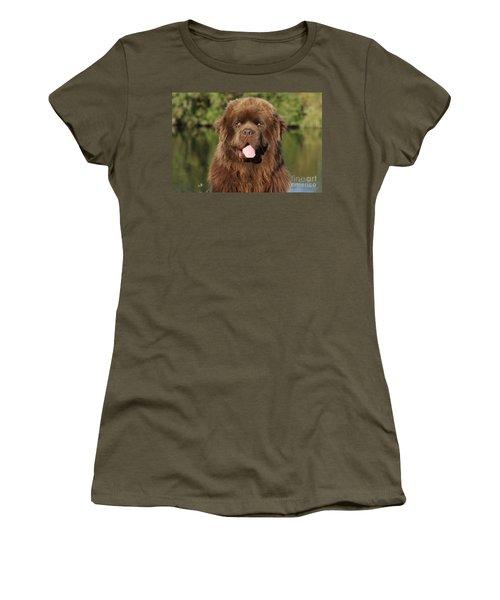Newfoundland Dog Women's T-Shirt
