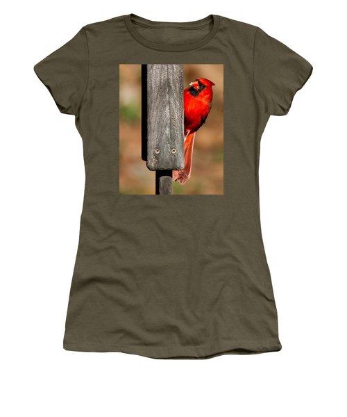 Northern Cardinal Women's T-Shirt