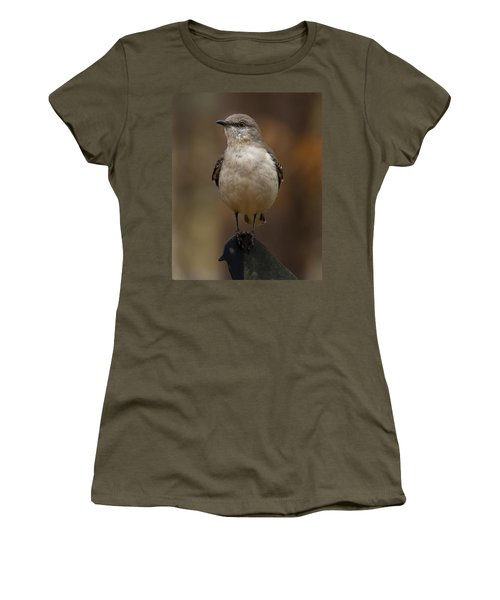 Northern Mockingbird Women's T-Shirt (Junior Cut) by Robert L Jackson