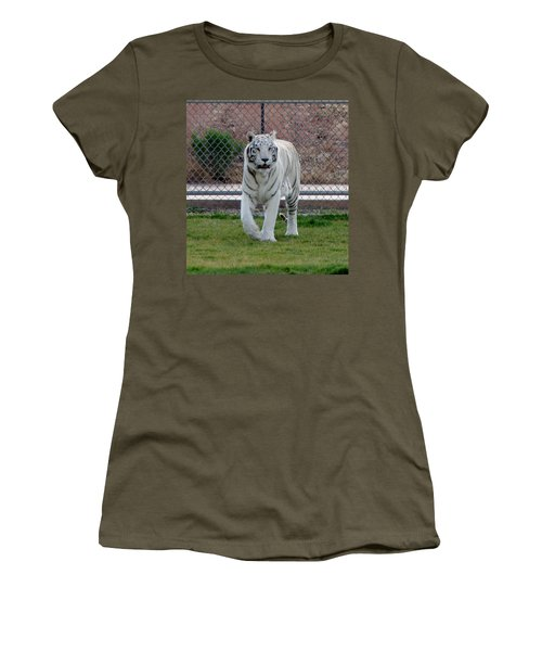 Out Of Africa White Tiger Women's T-Shirt