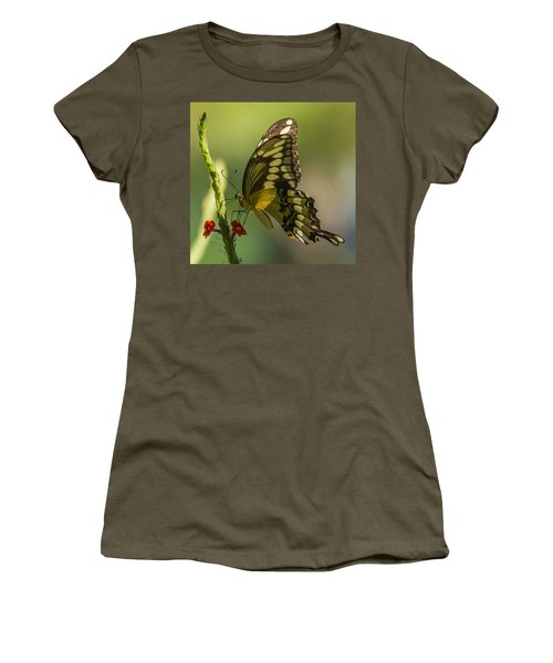 Women's T-Shirt (Junior Cut) featuring the photograph Palamedes Swallowtail by Jane Luxton