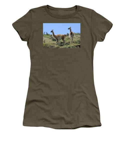 Patagonian Guanacos Women's T-Shirt (Junior Cut) by Michele Burgess