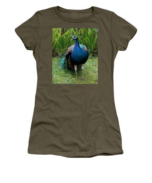 Peacock Women's T-Shirt (Junior Cut) by Pamela Walton