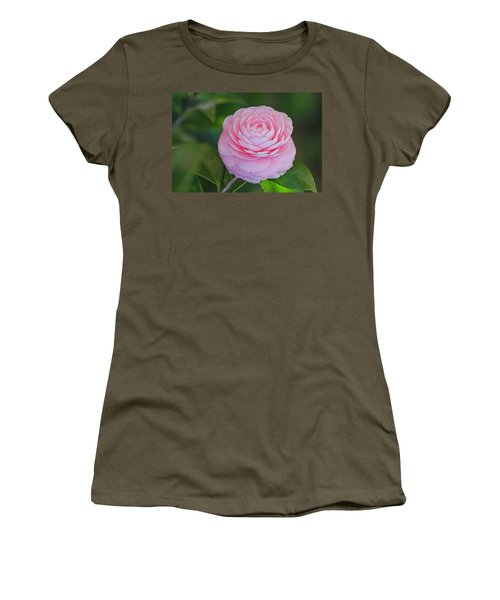 Perfection Women's T-Shirt