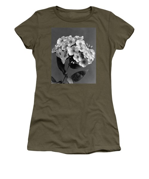 Phlox Blossoms Women's T-Shirt