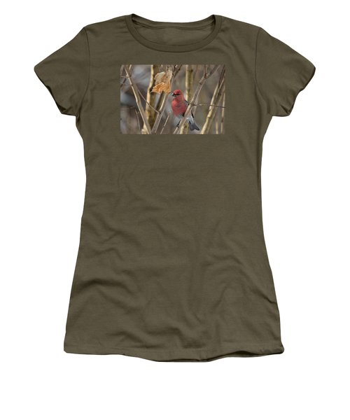 Women's T-Shirt (Junior Cut) featuring the photograph Pine Grosbeak by David Porteus