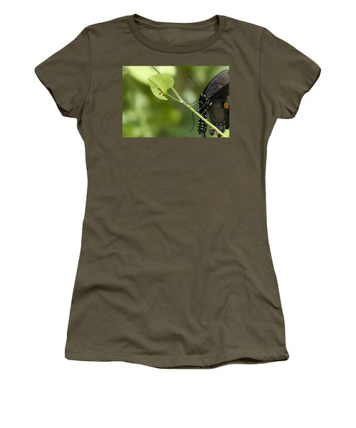 Women's T-Shirt (Junior Cut) featuring the photograph Pipevine Swallowtail Mother With Eggs by Meg Rousher