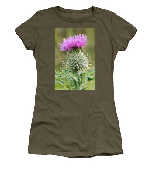Purple Thistle Women's T-Shirt (Junior Cut) by Jeremy Voisey