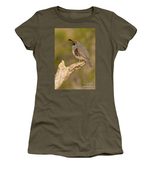 Women's T-Shirt (Junior Cut) featuring the photograph Quail On A Stick by Bryan Keil