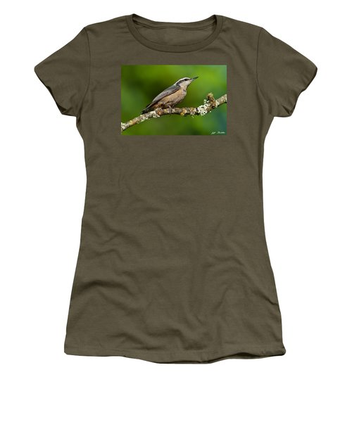Red Breasted Nuthatch In A Tree Women's T-Shirt