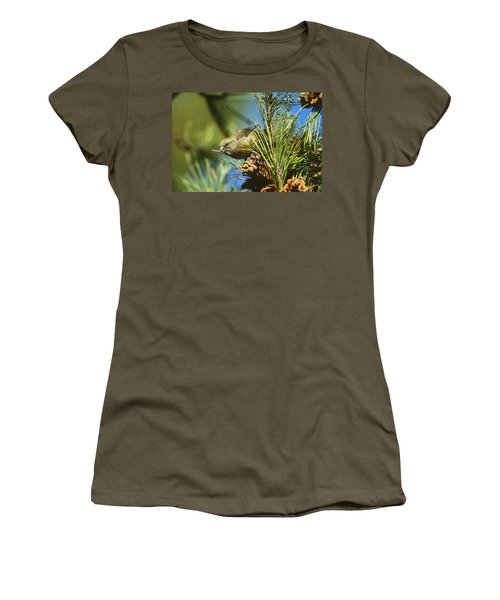 Red Crossbill Eating Cone Seeds Women's T-Shirt (Athletic Fit)