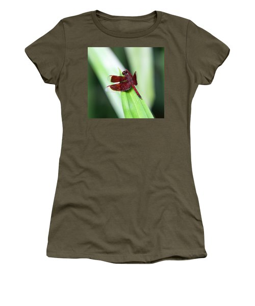 Women's T-Shirt (Junior Cut) featuring the photograph Red Dragon by Shoal Hollingsworth