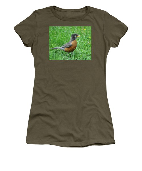 Robin 334 Women's T-Shirt (Athletic Fit)