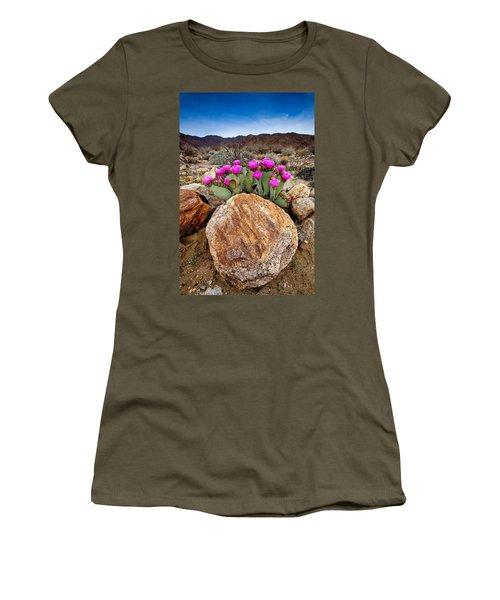 Rock And Beavertail Women's T-Shirt